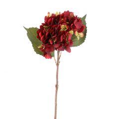 Hortensie Herbst, weinrot, 46 cm