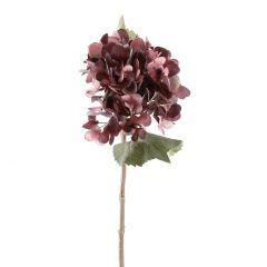 Hortensie Herbst, pflaume, 46 cm