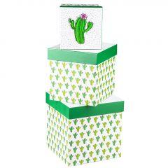 3er Set Geschenkkarton, Kaktus