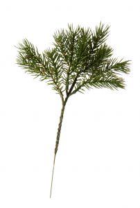 Zweig Tanne Natur, grün, 27 cm