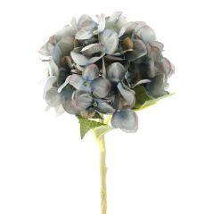 Hortensie Lisa, blau, 36 cm