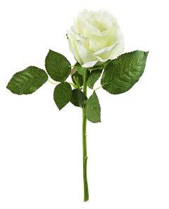 Rose, 30 cm, weiß
